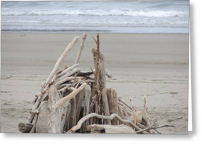 Driftwood Fort Greeting Card by Traci Hallstrom