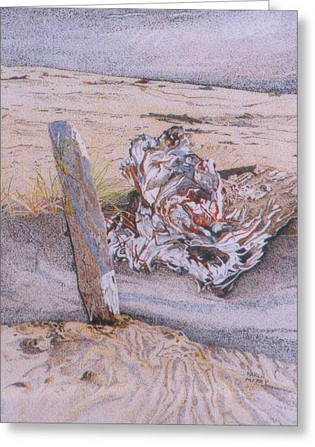 Sanddunes Drawings Greeting Cards - Driftwood Greeting Card by Karen Merry