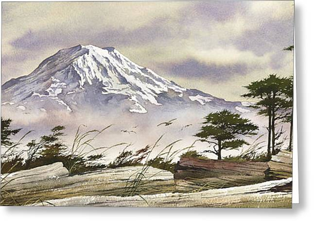 Landscape Framed Prints Greeting Cards - Driftwood Majesty Greeting Card by James Williamson