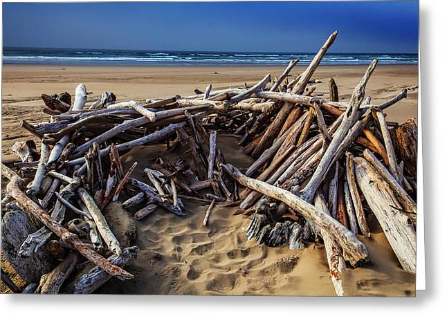 Driftwood Shelter Oregon Coast Greeting Card by Garry Gay