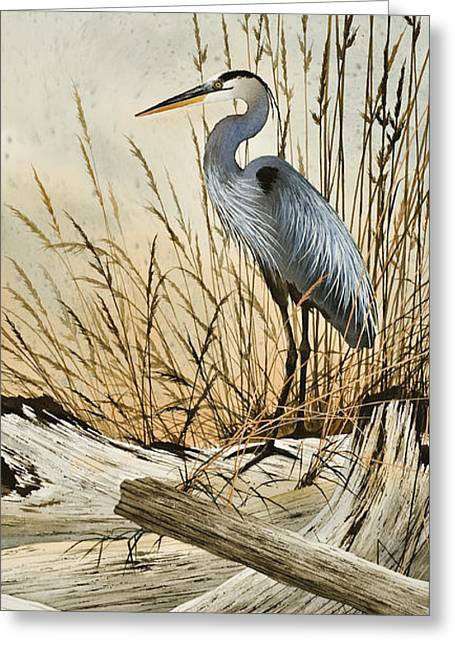 Heron Driftwood Print Greeting Cards - Driftwood Splendor Greeting Card by James Williamson