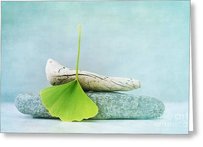 Driftwood Stones And A Gingko Leaf Greeting Card by Priska Wettstein