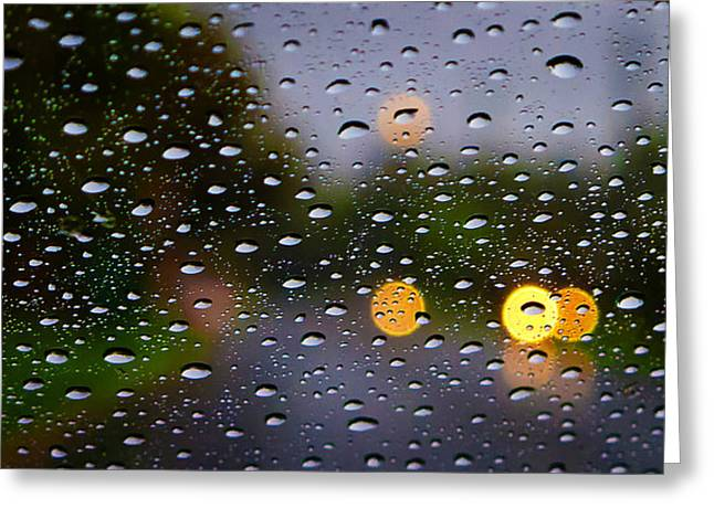 Tim Nichols Greeting Cards - Driving Rain Greeting Card by Tim Nichols