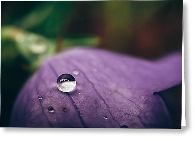 Droplet Greeting Card by Tracy  Jade