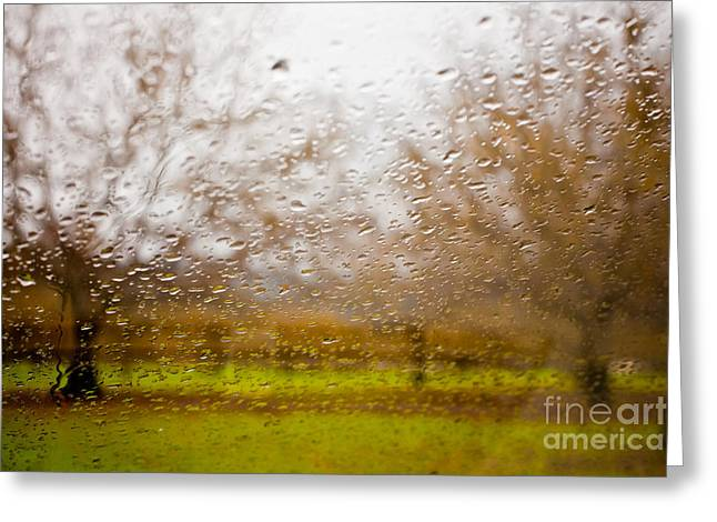 Sonoma County Greeting Cards - Droplets I Greeting Card by Derek Selander