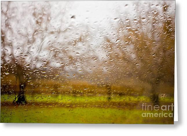 Sonoma Photographs Greeting Cards - Droplets I Greeting Card by Derek Selander