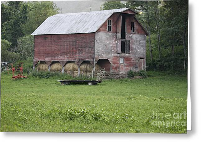 West Fork Greeting Cards - Dry Fork Red Greeting Card by Randy Bodkins