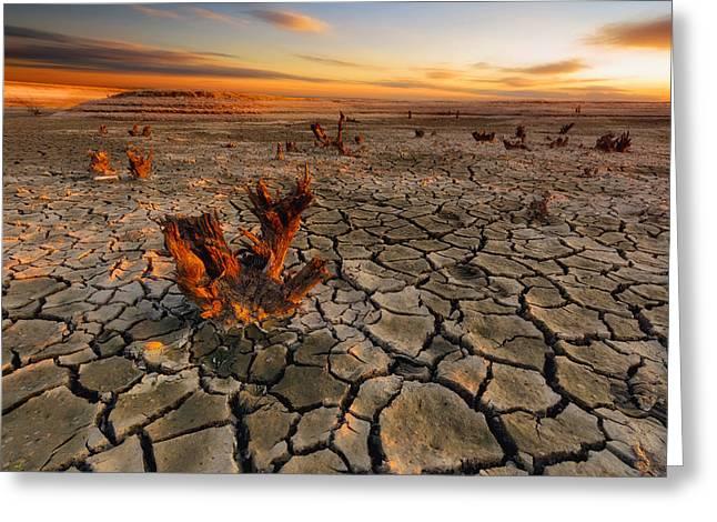 Dry Lake Photographs Greeting Cards - Dry Lake Greeting Card by Piotr Krol (bax)