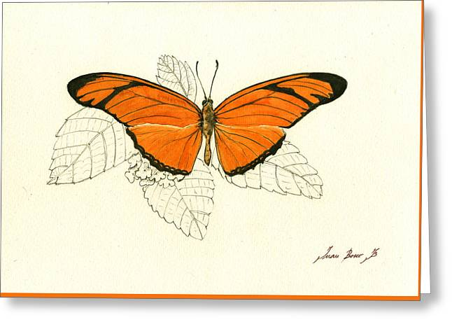 Dryas Iulia, Orange Julia Butterfly Greeting Card by Juan Bosco