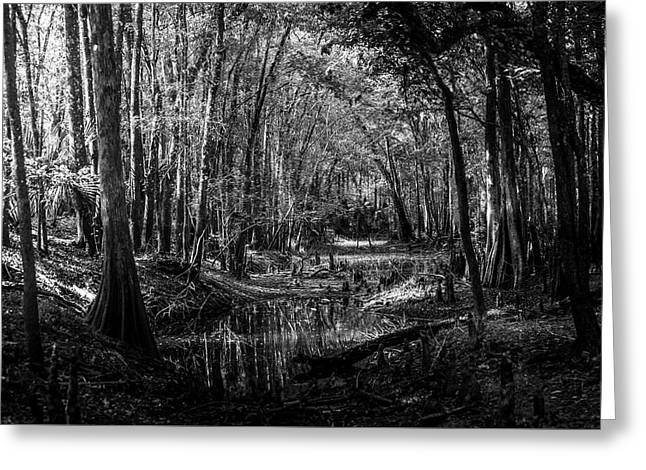 Drying Creek Bed Greeting Card by Marvin Spates