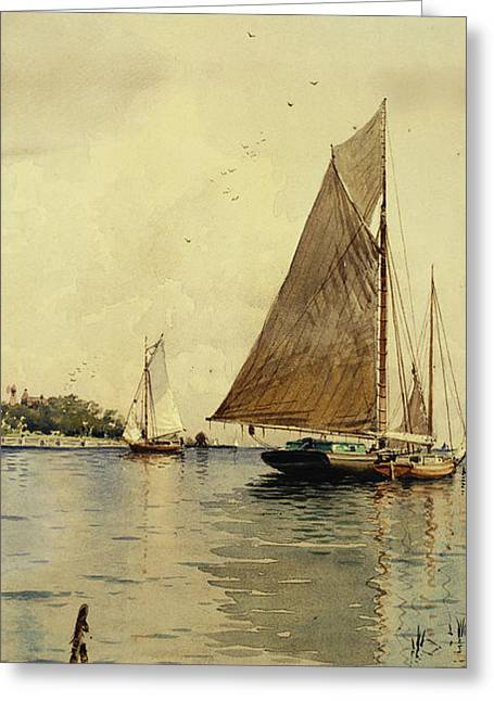 Drying The Sails, Oyster Boats, Patchogue, Long Island Greeting Card by Alfred Thompson Bricher