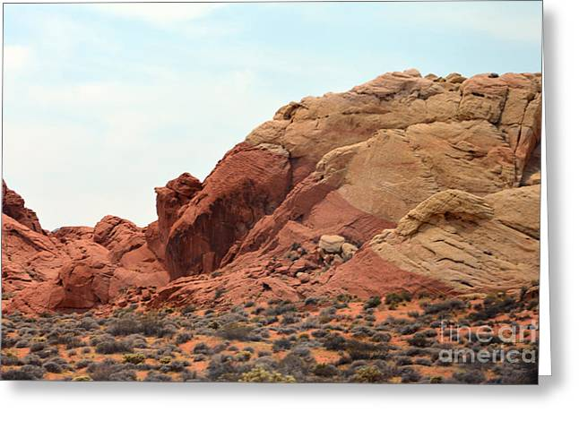 Boulders Tapestries - Textiles Greeting Cards - Dual Colours Greeting Card by Edna Weber