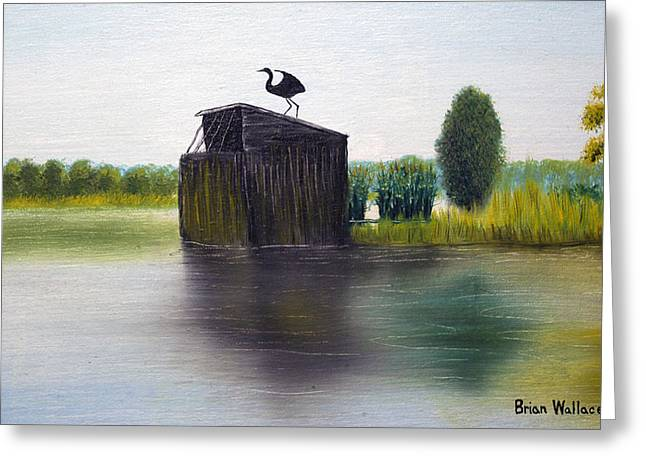 Md Paintings Greeting Cards - Duck Blind Greeting Card by Brian Wallace