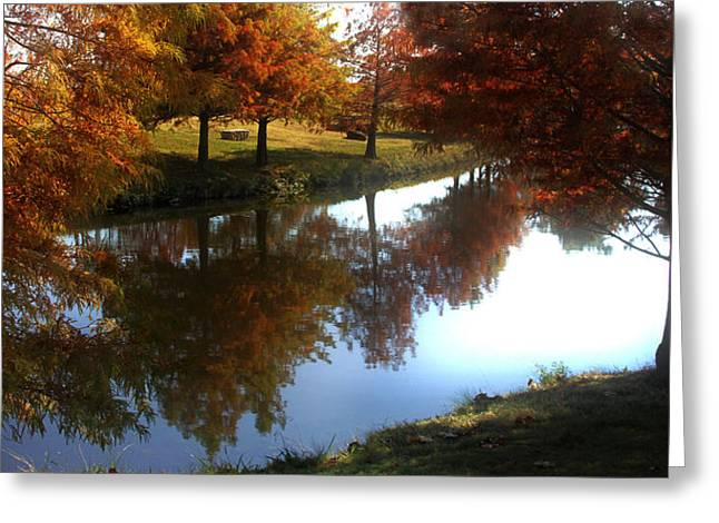 Duck Pond In The Fall Greeting Card by Rebecca Lynn Roby