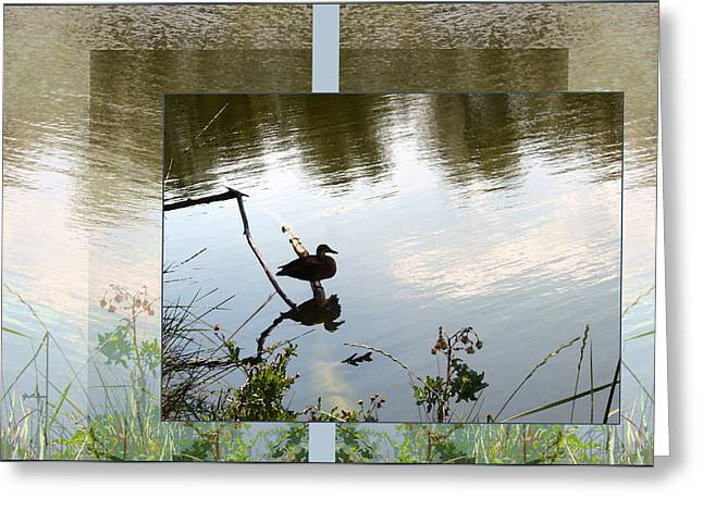 Reflection In Water Greeting Cards - Duck Pond Perch on Summer Day Greeting Card by Gretchen Wrede