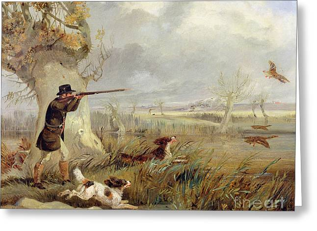 Duck Hunting Greeting Cards - Duck Shooting  Greeting Card by Henry Thomas Alken