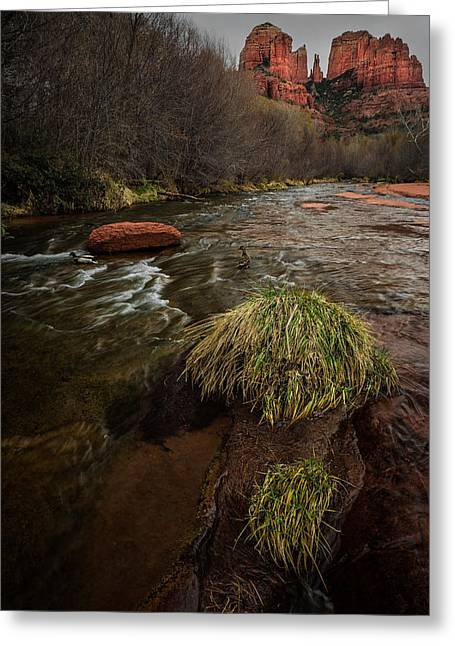 Cathedral Rock Pyrography Greeting Cards - Ducks Playing below Cathedral Rock Greeting Card by Rick Strobaugh