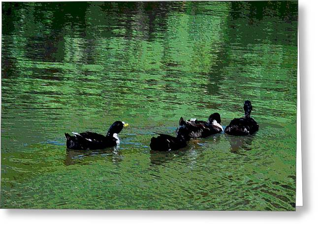 Ducks Swim In A Pond 2 Greeting Card by Lanjee Chee