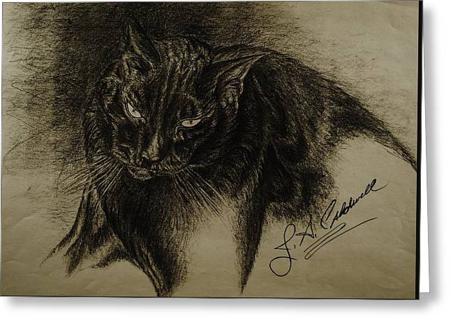 Pencil Drawings Of Pets Greeting Cards - Dudley Greeting Card by Jac  Jac