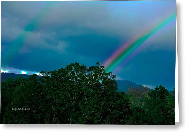Pink Black Tree Rainbow Photographs Greeting Cards - Dueling Rainbows Greeting Card by DigiArt Diaries by Vicky B Fuller