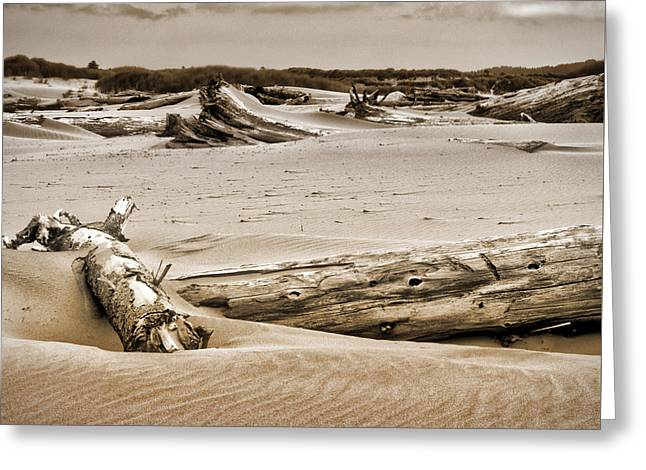 Sand Pattern Greeting Cards - Dune Country Greeting Card by Bonnie Bruno