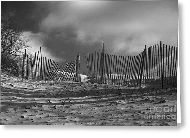 Dune Fence Greeting Card by Timothy Johnson
