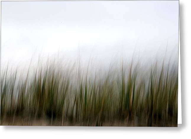Dune Grass Greeting Card by Doug Hockman Photography