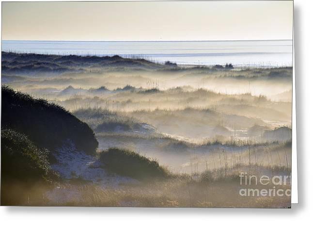 Foggy Beach Greeting Cards - Dune Haze Greeting Card by Tim Sevcik