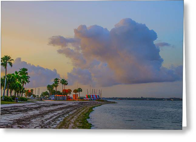 Bill Cannon Photography Greeting Cards - Dunedin Causeway - Dunedin Florida Greeting Card by Bill Cannon