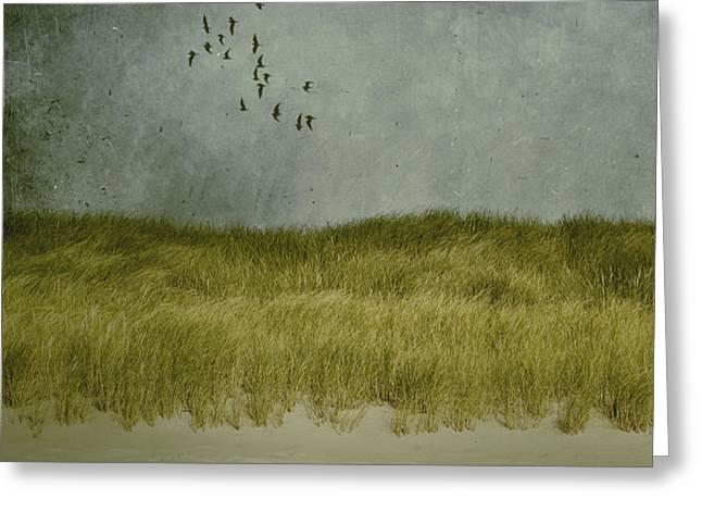 dunes Greeting Card by Joana Kruse