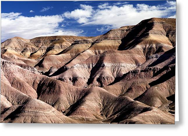 Dunes Of Arizona Greeting Card by JT Alexander