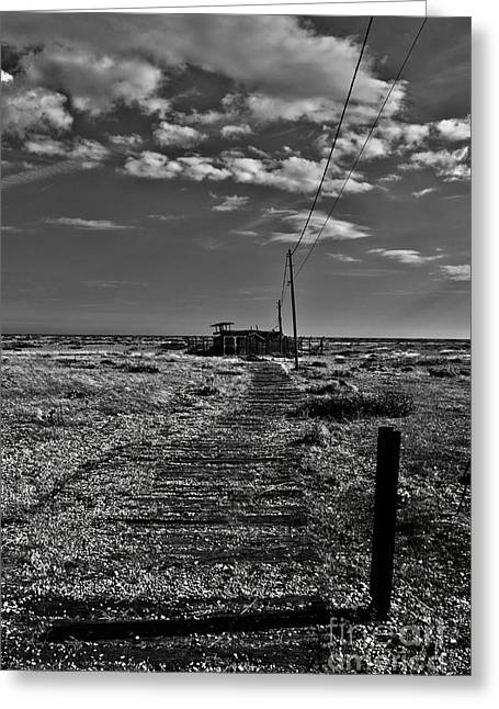 Shed Digital Art Greeting Cards - Dungeness Sheds Greeting Card by Nigel Bangert