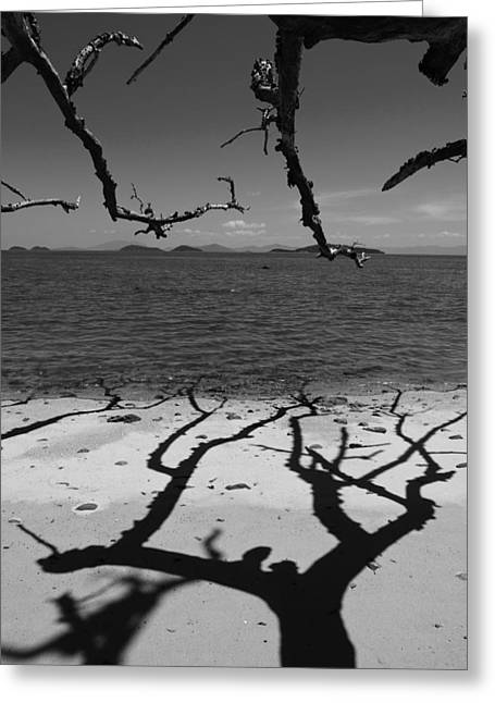 Dunk Island Australia 172 Greeting Card by Per Lidvall