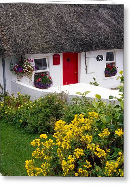 Thatch Greeting Cards - Dunmore East Harbour, County Waterford Greeting Card by Richard Cummins