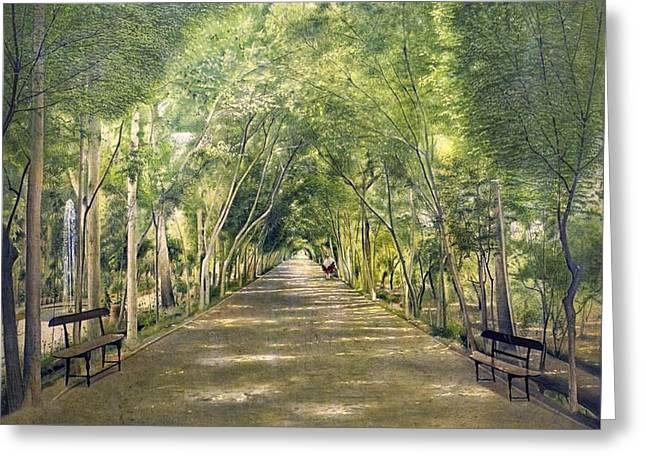 Tehran Greeting Cards - Dushan Tappe one of Tehrans suburbs Greeting Card by Celestial Images