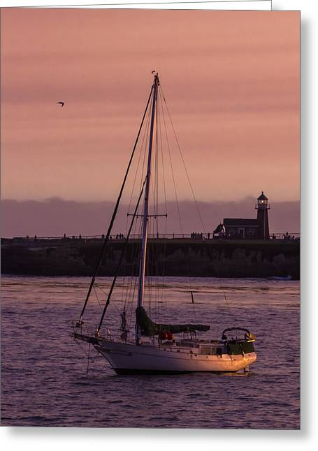 Santa Cruz Surfing Greeting Cards - Dusk In Santa Cruz Greeting Card by Wes Jimerson