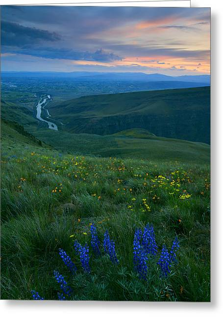 Lupines Greeting Cards - Dusk over the Yakima Valley Greeting Card by Mike  Dawson