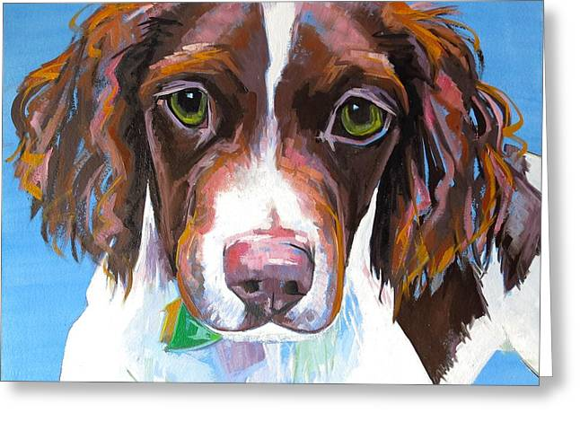 Spaniel Greeting Cards - Dutch Greeting Card by Sarah Gayle Carter