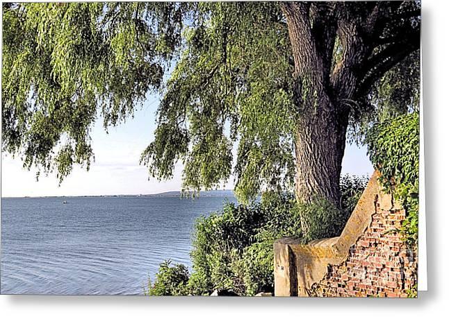 Duxbury Greeting Cards - Duxbury Bay Greeting Card by Janice Drew