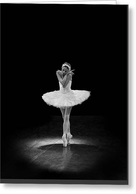 Young St. Clare Greeting Cards - Dying Swan 5 Alternative Size Greeting Card by Clare Bambers