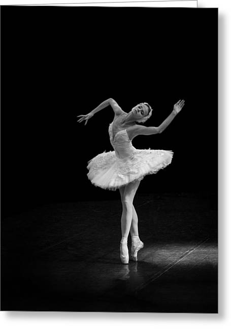 Young St. Clare Greeting Cards - Dying Swan 7 Alternate Size Greeting Card by Clare Bambers