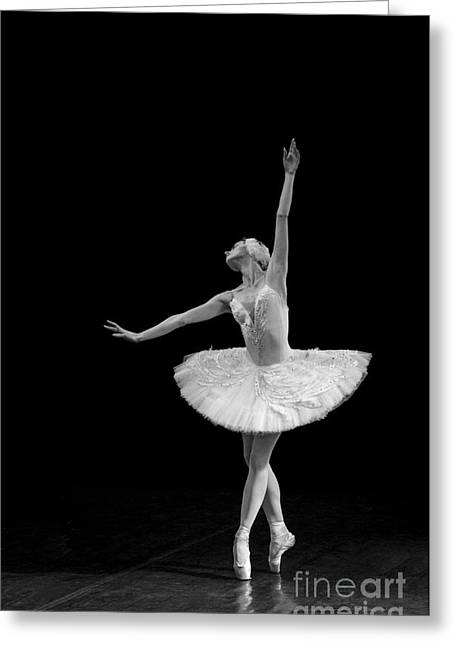 Young St. Clare Greeting Cards - Dying Swan 9 Alternative Size Greeting Card by Clare Bambers
