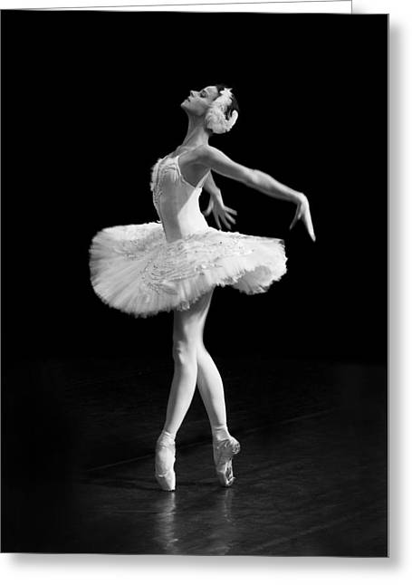 Young St. Clare Greeting Cards - Dying Swan I Alternative Size Greeting Card by Clare Bambers