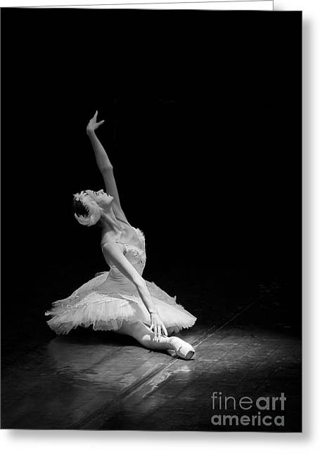 Young St. Clare Greeting Cards - Dying Swan II Alternative Size Greeting Card by Clare Bambers
