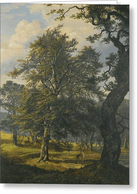 Dyrehaven Near Copenhagen Greeting Card by Johan Christian Dahl