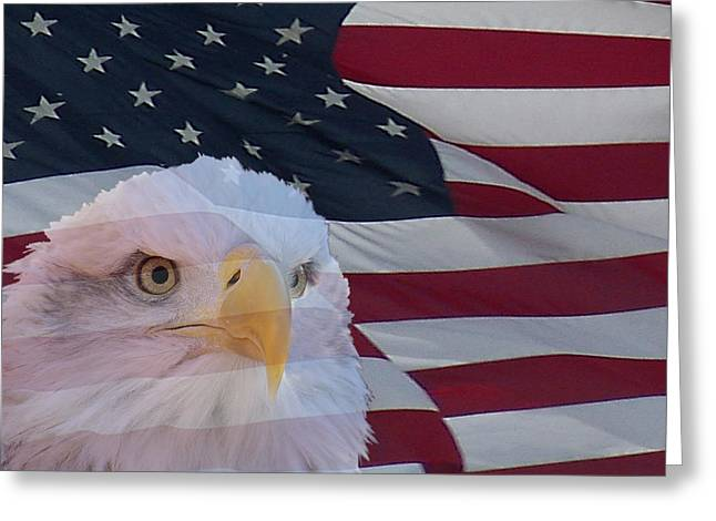 Eagle And Flag Greeting Cards - Eagle and Flag Greeting Card by Ernie Echols