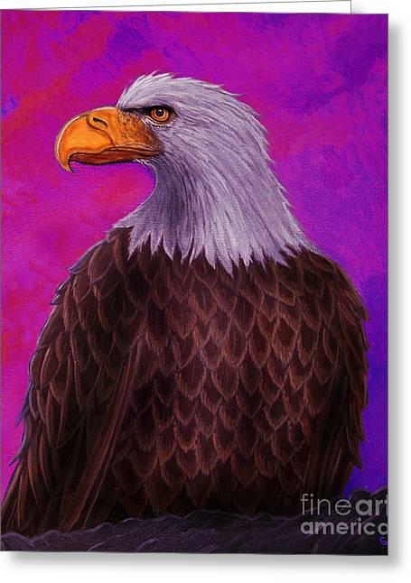 Eagle Greeting Cards - Eagle Crimson skies Greeting Card by Nick Gustafson