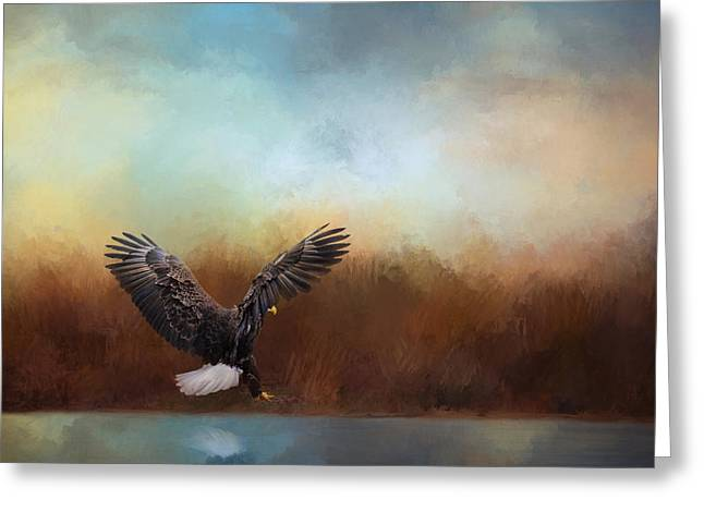 Hunting Bird Greeting Cards - Eagle Hunting In The Marsh Greeting Card by Jai Johnson