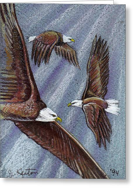Eagle In Flight Greeting Cards - Eagles In Flight Greeting Card by John Keaton