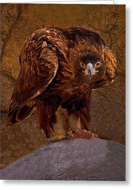 Eagle Pyrography Greeting Cards - Eagles Stare Greeting Card by Rick Strobaugh